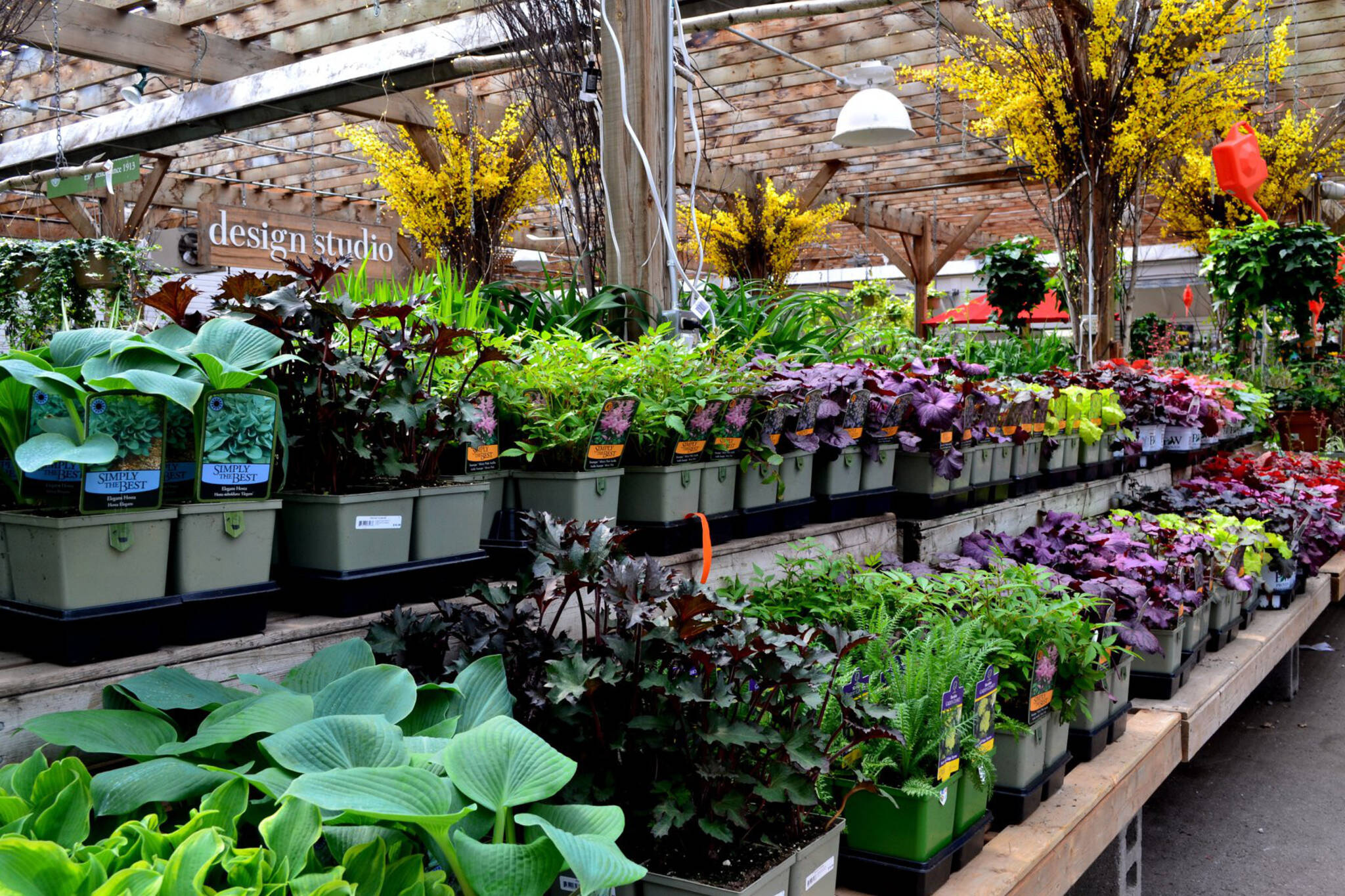 Garden Centres Toronto