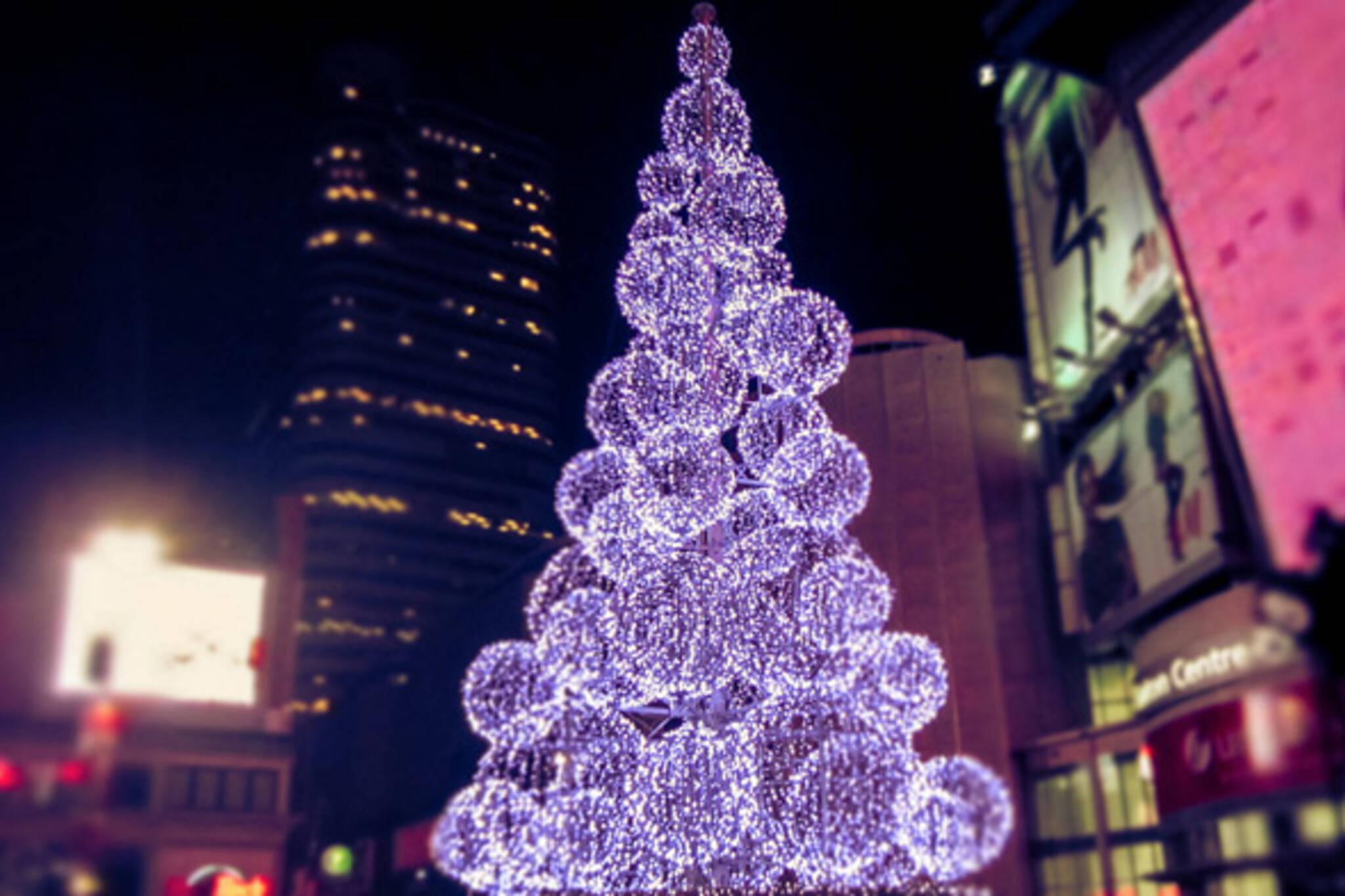 christmas tree yonge dundas