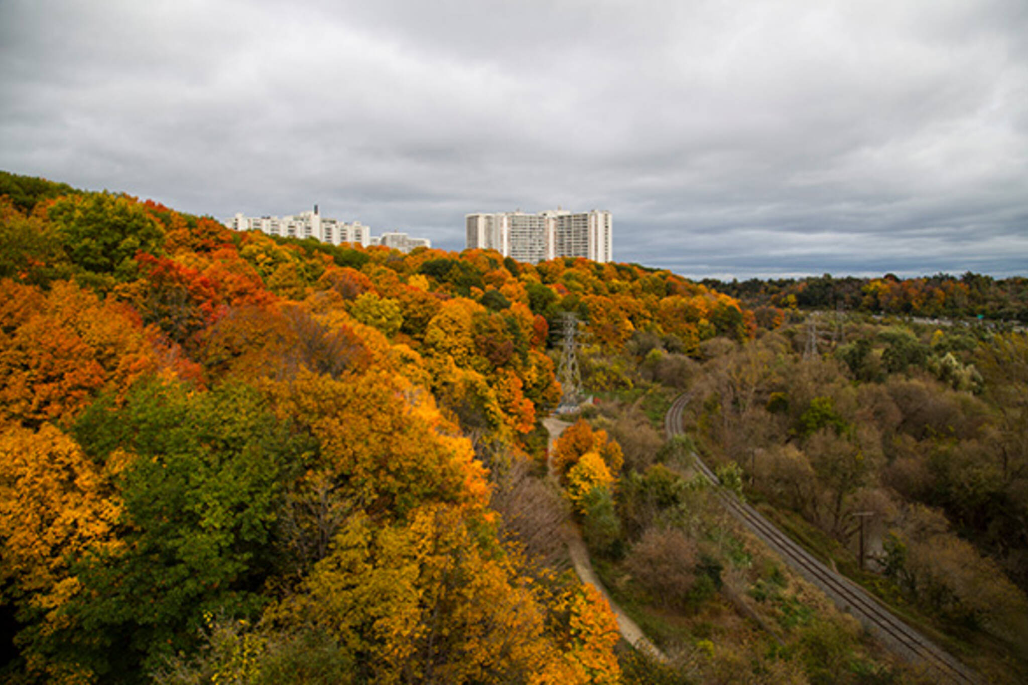 Don Valley Fall