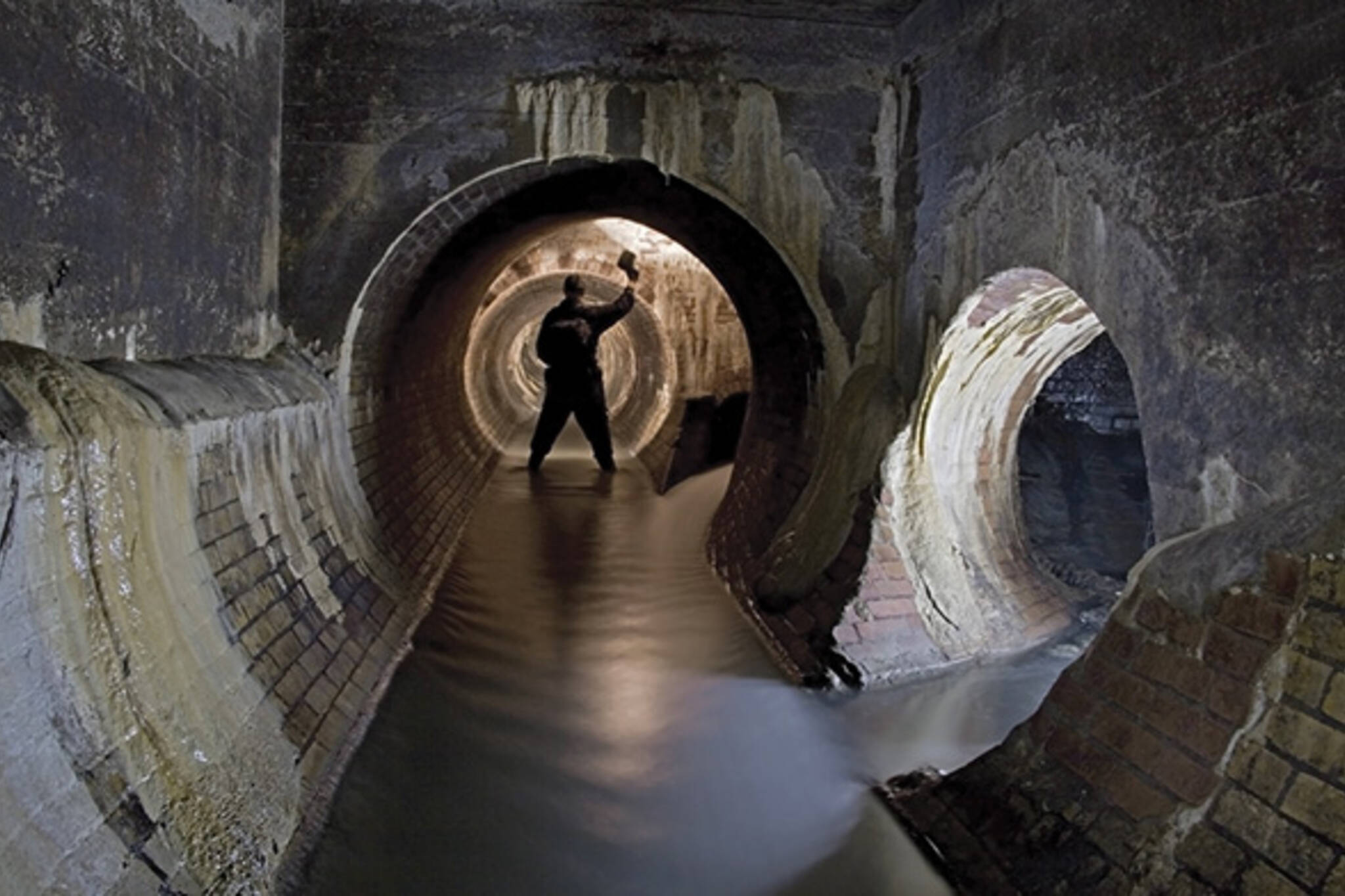 Michael Cook Sewers