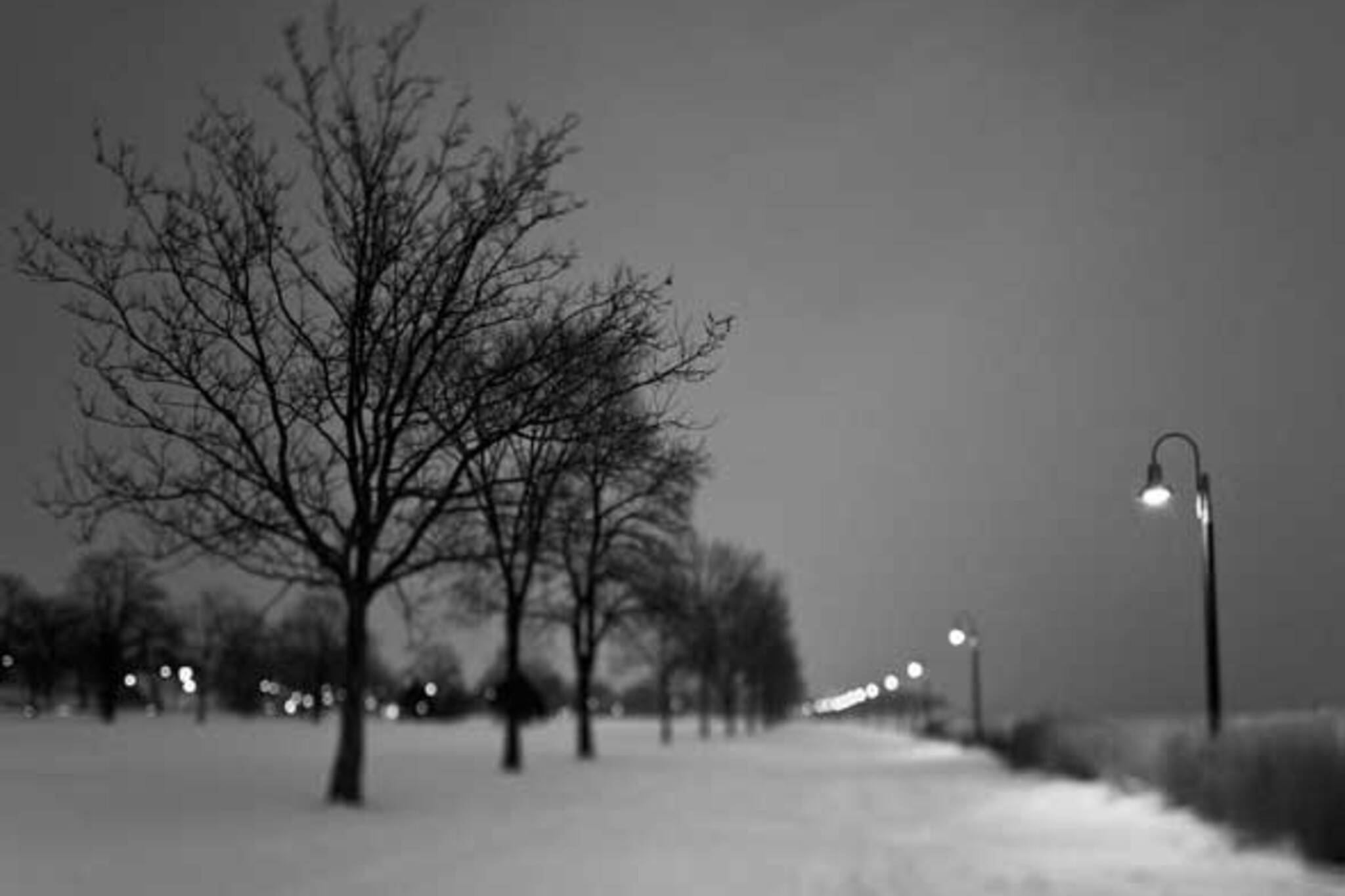 Lakeshore Path at Dusk by ste&we
