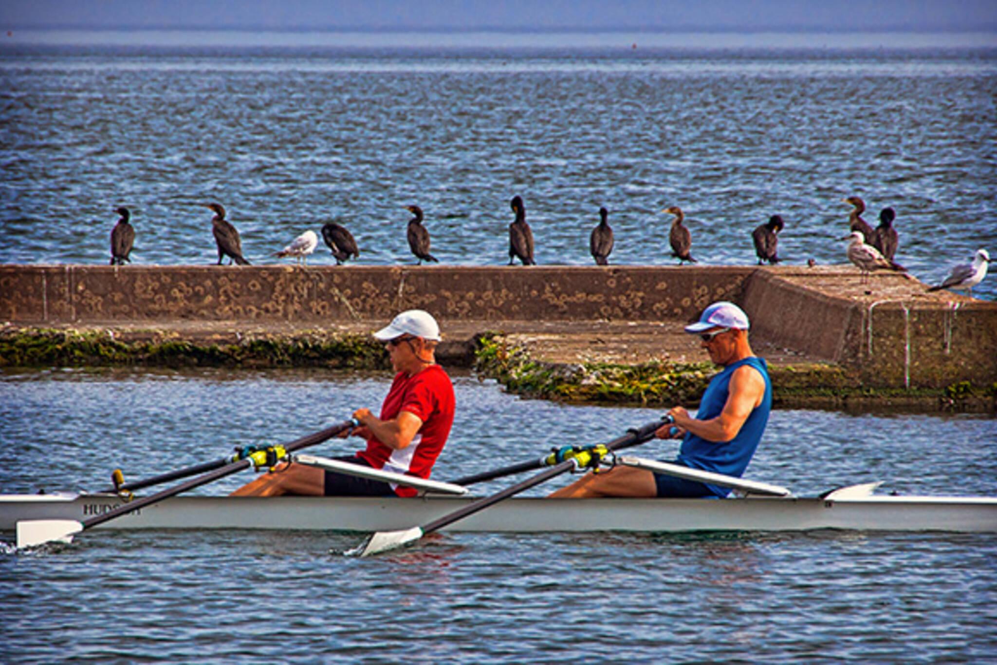 toronto rowing