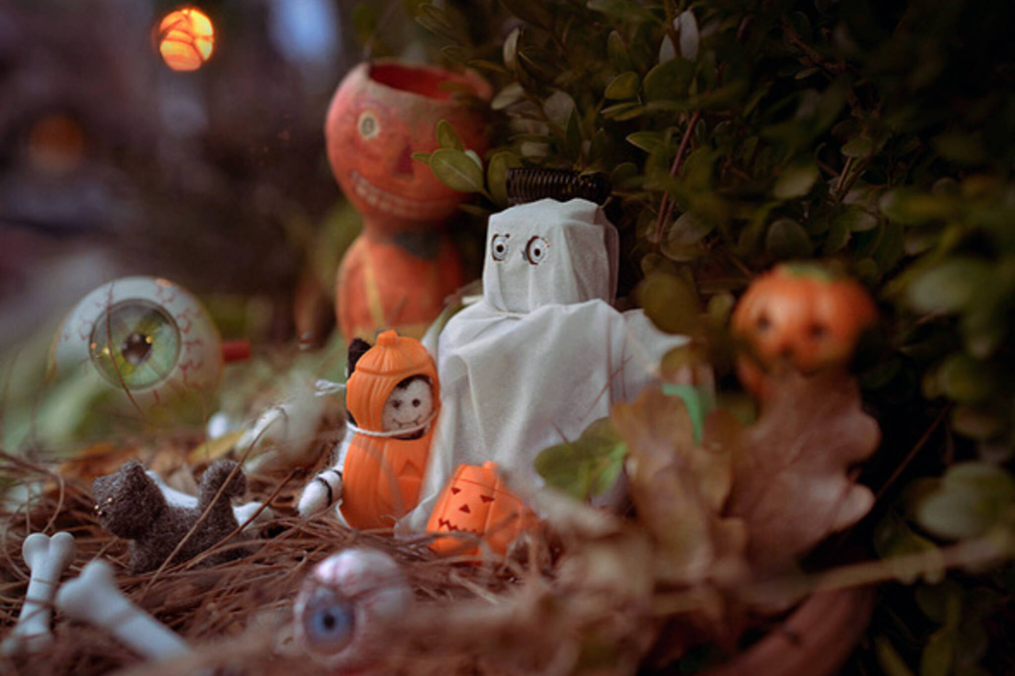 Toronto Halloween