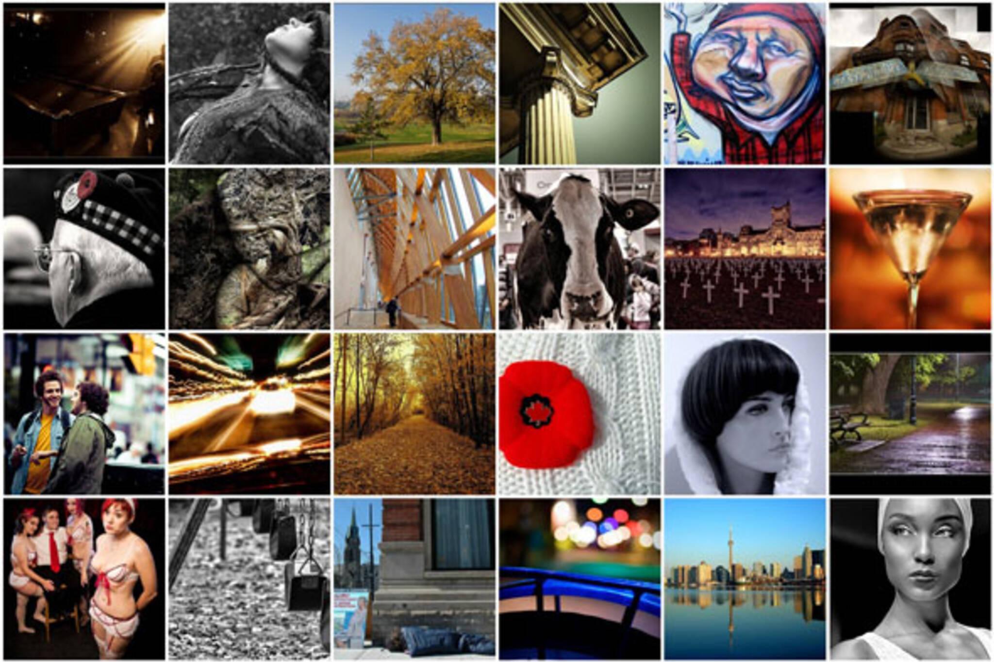 Flickr Forum - Nov 14, 2008