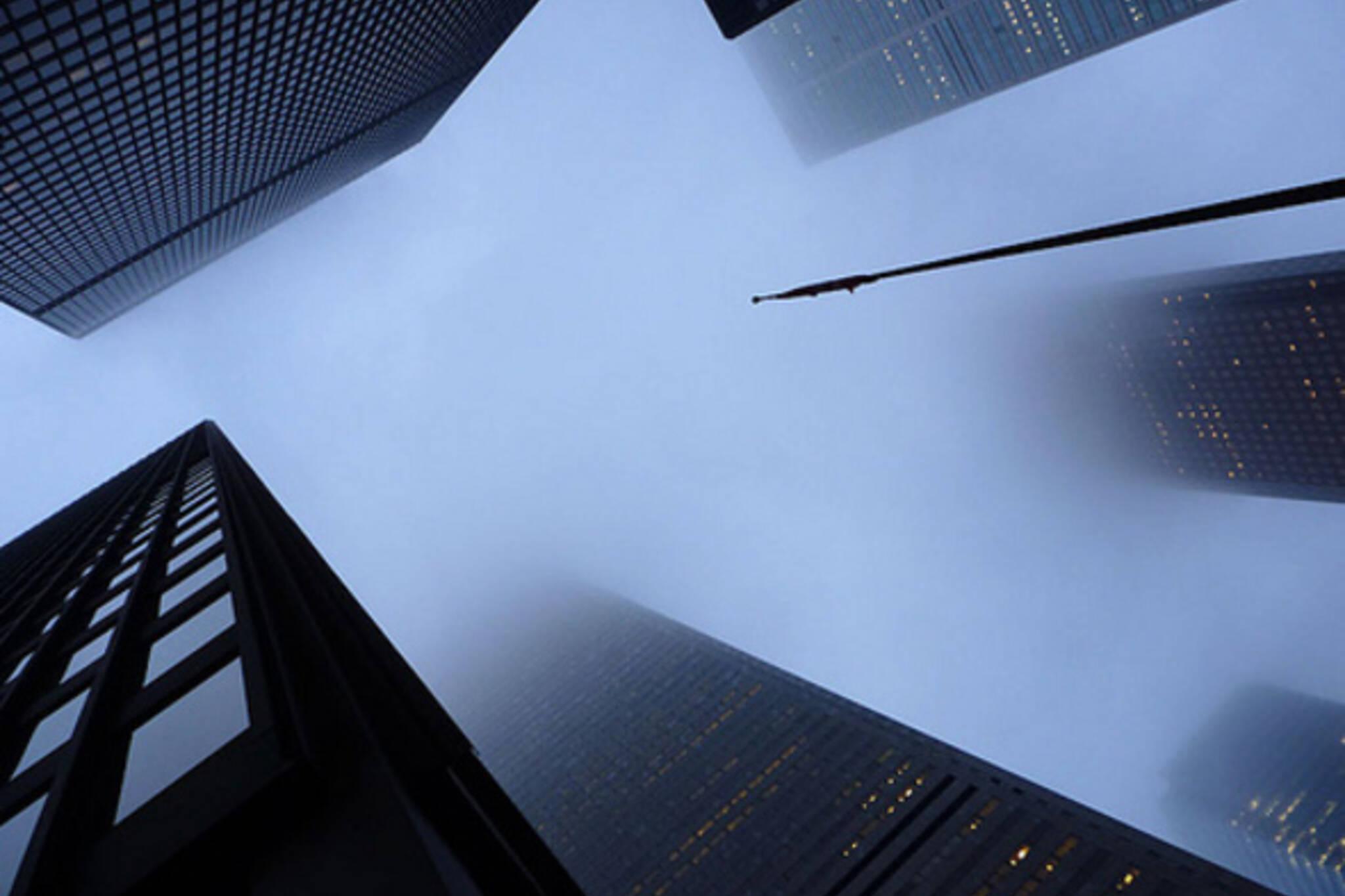 20100127-Looking Up.jpg