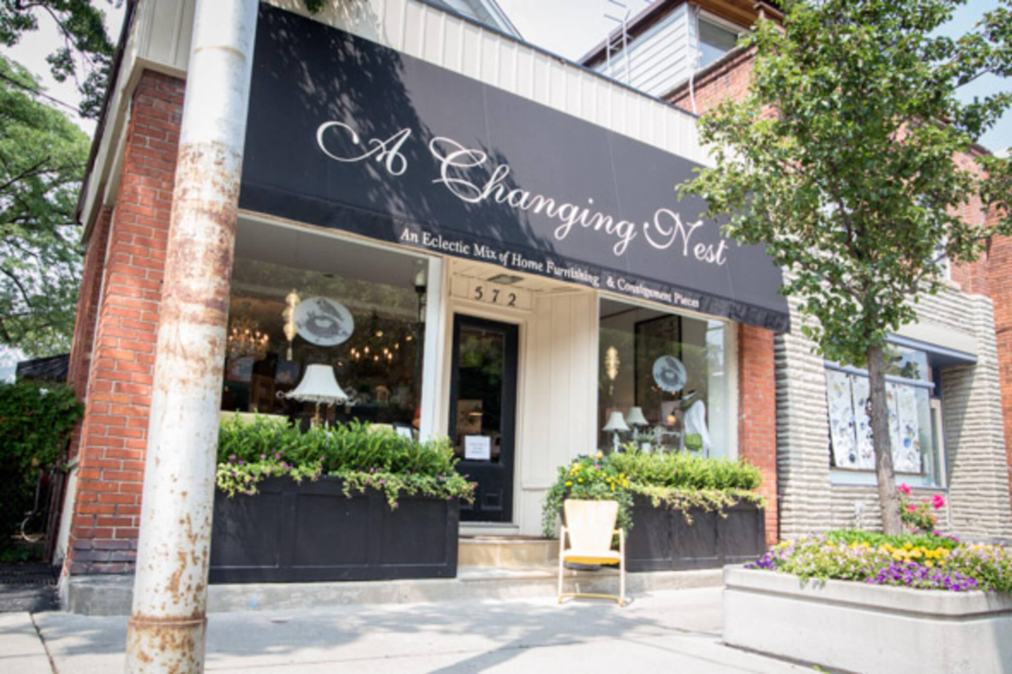 A Changing Nest Toronto